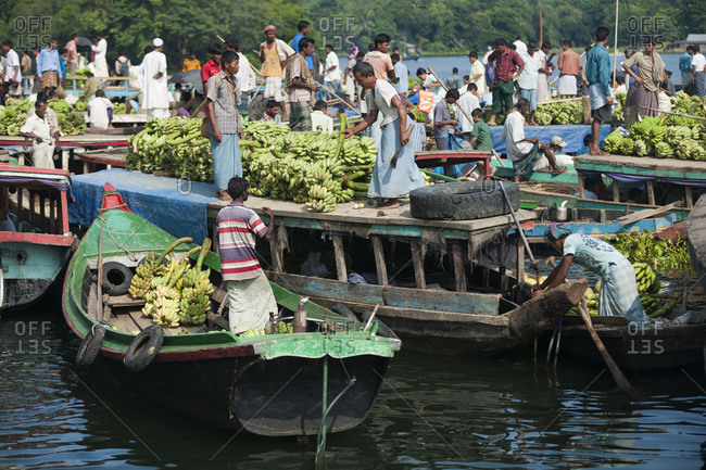 Rangamati, Chittagong Hill Tracts, Bangladesh - September 29, 2010: Bananas arrive to the Wednesday market by boat on Kaptai lake