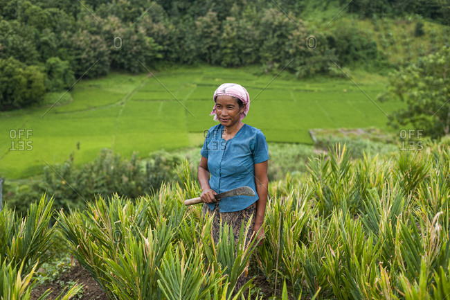A Marma woman clearing weeds in a ginger field in the Chittagong Hill Tracts in Bangladesh