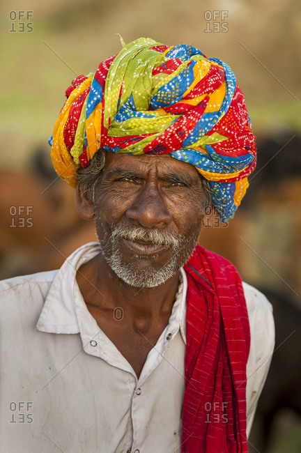 A Rajasthani farmer wearing traditionally brightly colored turban, Rajasthan, India