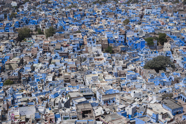 The Blue City of Jodhpur in Rajasthan seen from Mehrangarh Fort