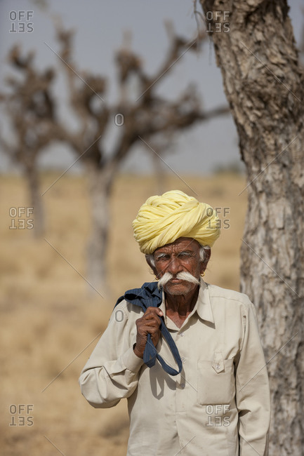 An old farmer with his cows in the distance