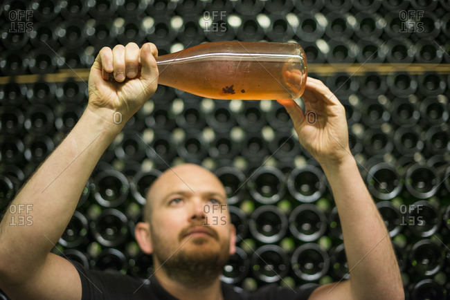 A winemaker checks the sediment content in a  ageing bottle of sparkling wine in the UK