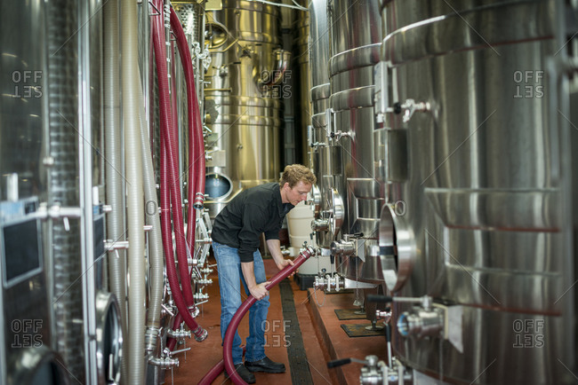 Ditchling Common, East Sussex, United Kingdom - October 6, 2015: A man working in a winery in England connects a hose to a steel fermentation tank