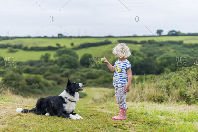 Penzance, Cornwall, United Kingdom - April 9, 2016: A little girl throws a ball for a Border Collie dog