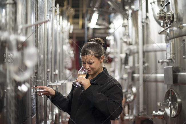Ditchling Common, East Sussex, United Kingdom - October 6, 2015: A woman working in a winery in England smells a glass of wine