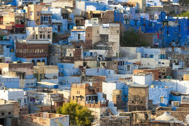 Blue buildings of Jodhpur in Rajasthan known as The Blue City