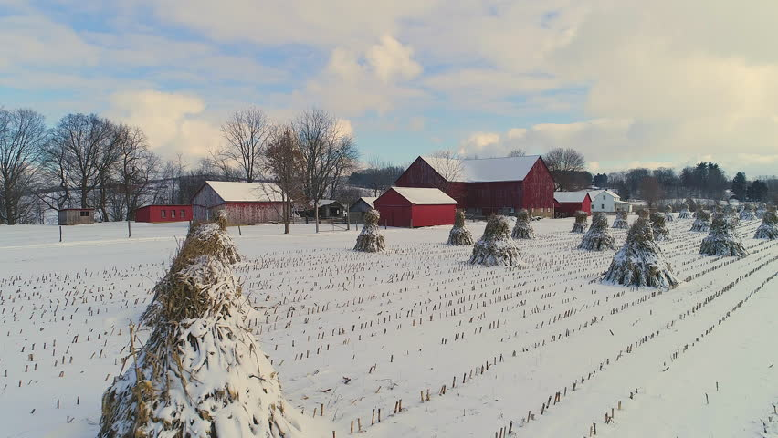 Amish farm in winter with straw stands in the snow covered field. Beautiful red barns in distance
