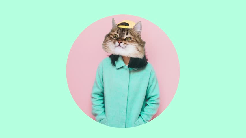 Girl with a cat's head in a turquoise coat. creative pastel minimal art