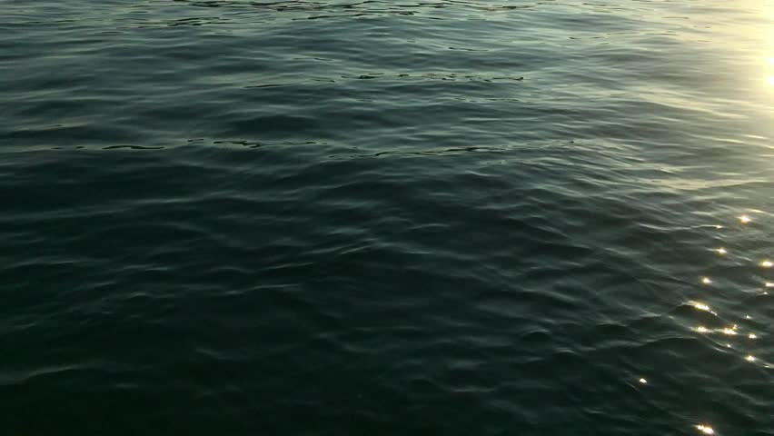 Beautiful sunset on Adriatic Sea coast in Croatian Riviera.Crystal clear water waves sparkle in the evening dusk sun light.Awesome travel destination for summer vacation trip.Natural beauty background Royalty-Free Stock Footage #1006684678
