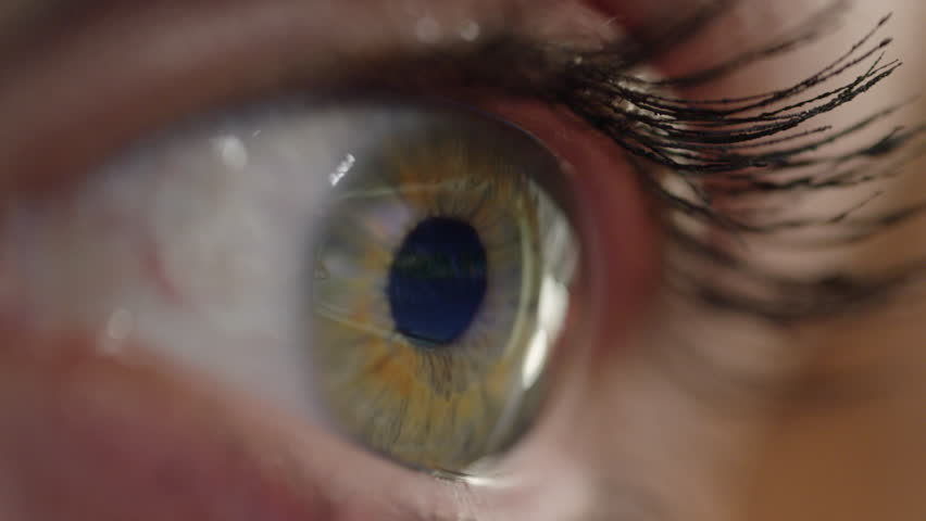 CLOSE UP, MACRO Unrecognizable woman with long eye lashes looking at a map of the world. A spinning globe playing on the computer screen is reflected in great detail on the shiny surface of girl's eye   Shutterstock HD Video #1006756459