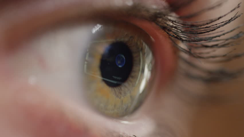 CLOSE UP, MACRO: A spinning globe on the computer screen is reflected in the eye of a girl wearing mascara. Unrecognizable woman looking at a computer displaying the world map. Harmful blue light.   Shutterstock HD Video #1006756465