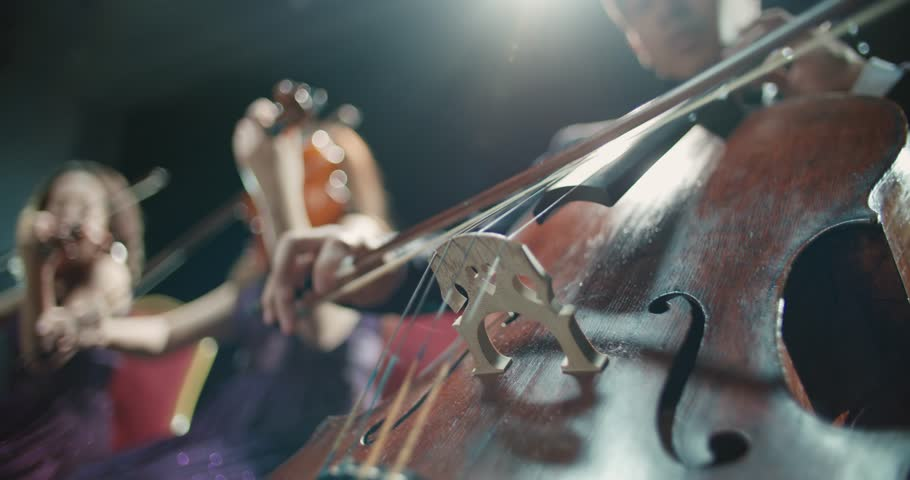 String quartet performs on stage, detail shot | Shutterstock HD Video #1006776523