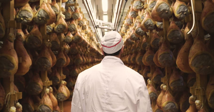 In a ham factory, a man in charge of quality control walks between the hams and controls, the perfume and the certified Italian quality. Concept of: tradition, Italy, food, ham #1006869340