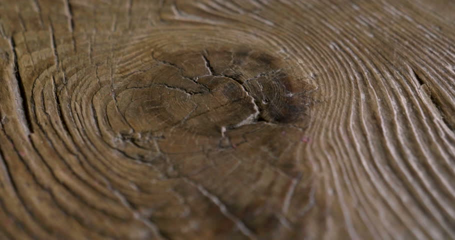 Macro shot of a precious wood in which you can see the color, the wood grain, the knots and the high quality workmanship. Concept of: love for nature, wood, furniture.
