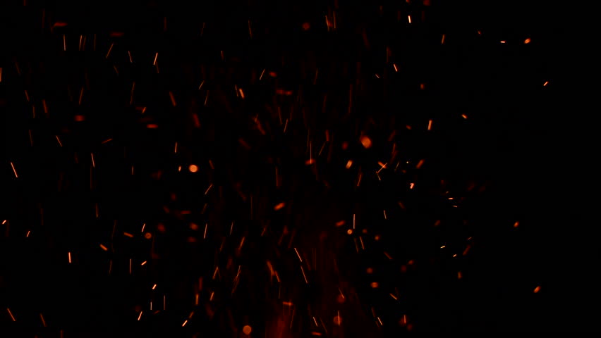 Fire charcoal Sparks charcoal | Shutterstock HD Video #1007029783