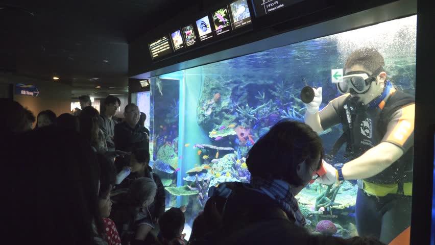 TOKYO, JAPAN - December 2017 : Group of visitors at an aquarium looking at fishes. #1007107087