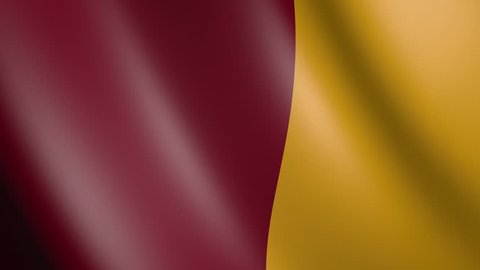 Flag of Rome with fabric texture, seamless loop