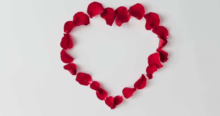 Red rose petals forming heart shape on white background. Flat lay love concept. Stop motion animation. | Shutterstock HD Video #1007217127