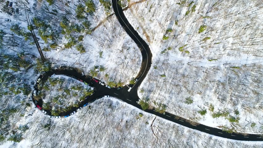 Aerial video of curvy road in forest | Shutterstock HD Video #1007243575