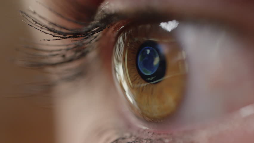 CLOSE UP MACRO: Pretty brown female eye looking at map of Madrid on the computer screen. Woman with brown eyes and long lashes making travel plans. Computer screen reflection of Madrid in woman's eye.   Shutterstock HD Video #1007327857