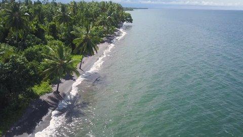 A full shot of trees and shoreline. Camera moves forward