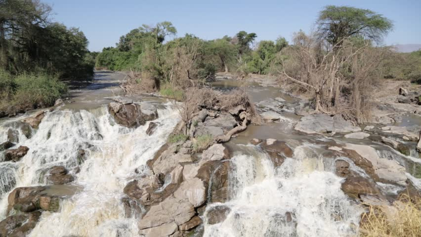 In Ethiopia Africa the  awash national park  and the falls nature wild  | Shutterstock HD Video #1007396233