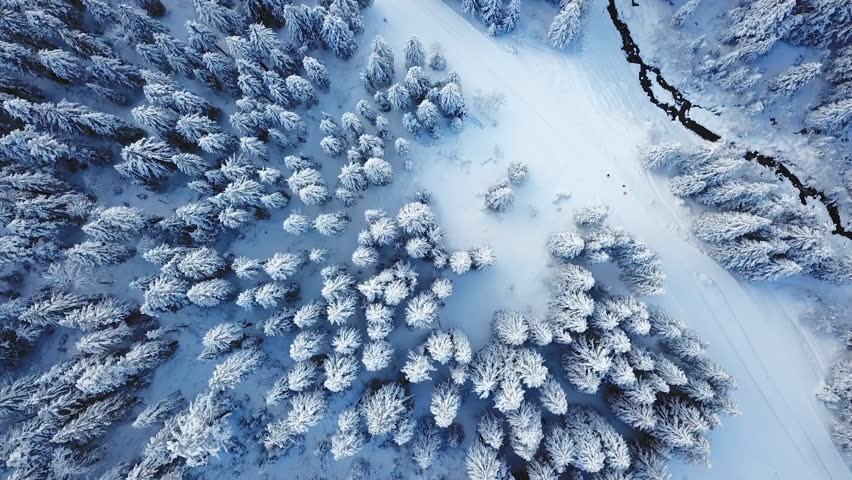 Winter season snowy mountain forest aerial shot / Breathtaking natural landscape, frozen forest and dark mountain river