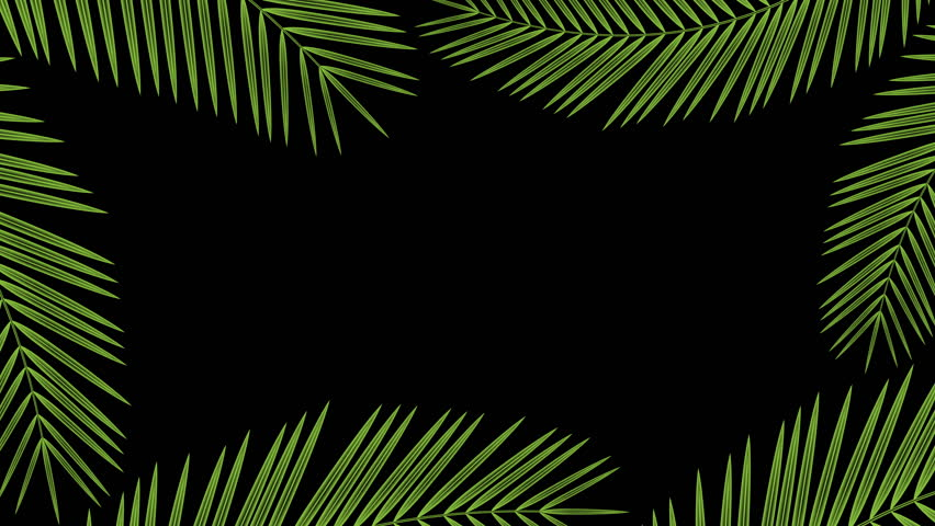 Similar To Border From Gleaming Shining Frozen Pattern With Green Screen Behind Winter Theme Popular Royalty Free Videos Imageric Com Find images of tropical leaves. green screen behind winter theme