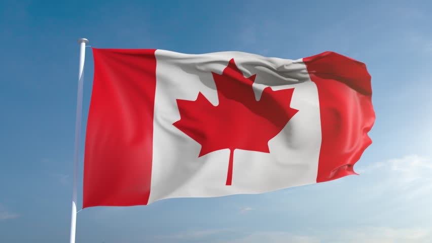 50fps Canada seamless looping flag in 4k, alpha channel included as matte. Beautiful detailed fabric waving in the wind. 4k. Slow motion in 25fps Royalty-Free Stock Footage #1007532817