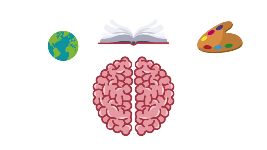 Brain and knowledges HD animation   Shutterstock HD Video #1007612353