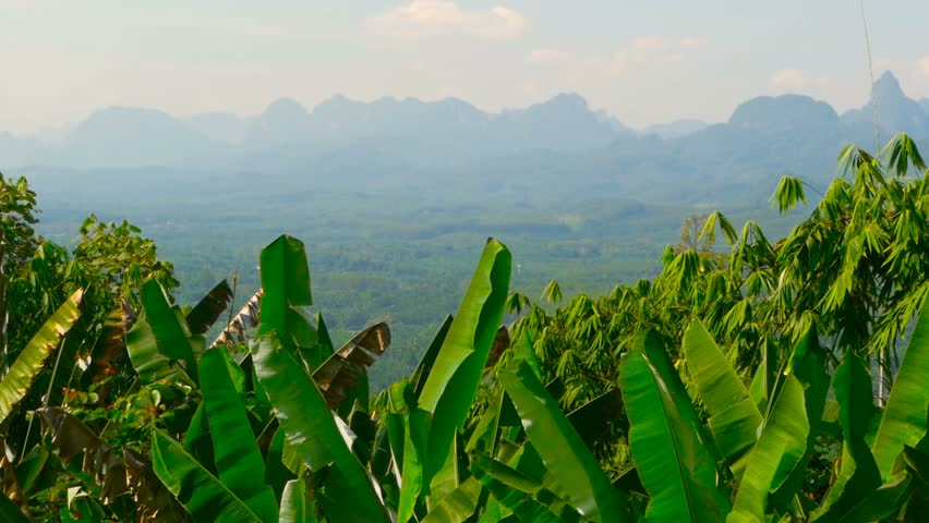 View of the valley with mountains in the background. Rocks on the horizon with banana palm leaves in the foreground. Typical Asian Landscape. Virgin nature of the southeast asia. Thailand.