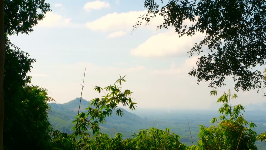 View of the valley with mountains in the background through the bamboo leaves. Typical Asian Landscape. The branches of tree are swaying in the wind. Virgin nature of the southeast asia. Thailand.