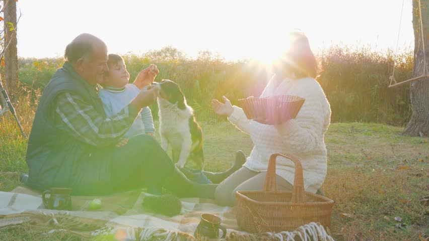Picnic on sunset background, small boy kisses grandparent sitting on plaid with basket near dog and hedgehog | Shutterstock HD Video #1007717185
