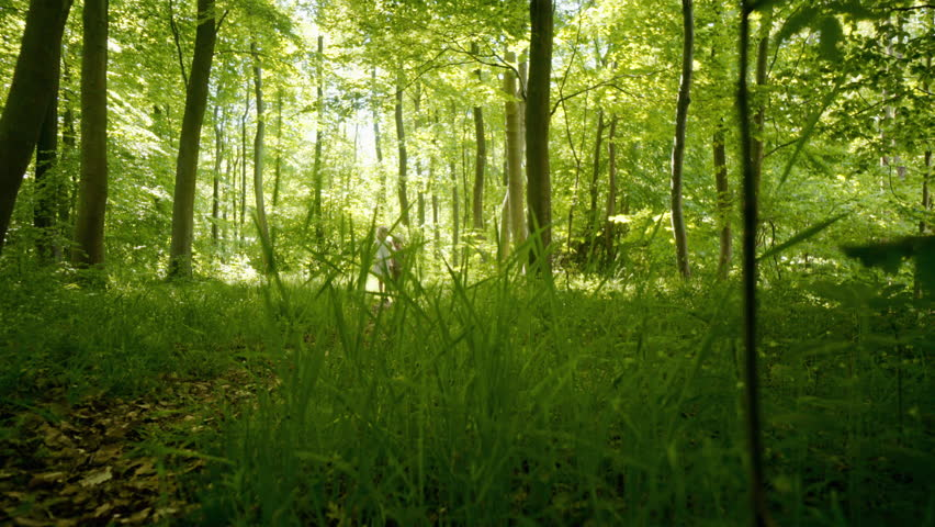 Brother and sister walking through forest, Denmark | Shutterstock HD Video #1007786098