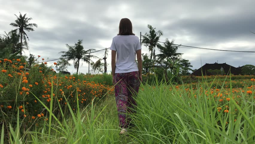 Woman walking on Marigold field, Indonesia, Bali. Sunny day. | Shutterstock HD Video #1007856517