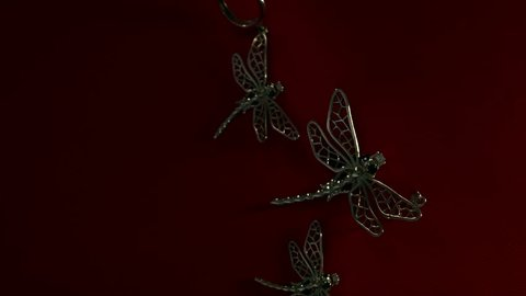 jewelry dragonfly on a red background, camera slide at short distance
