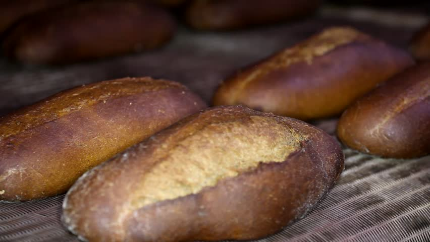 Loaf of bread on the production line in the bakery. Baked loaf of bread in the bakery, just out of the oven with a nice golden color. Bread bakery food factory production with fresh products.  | Shutterstock HD Video #1008248248