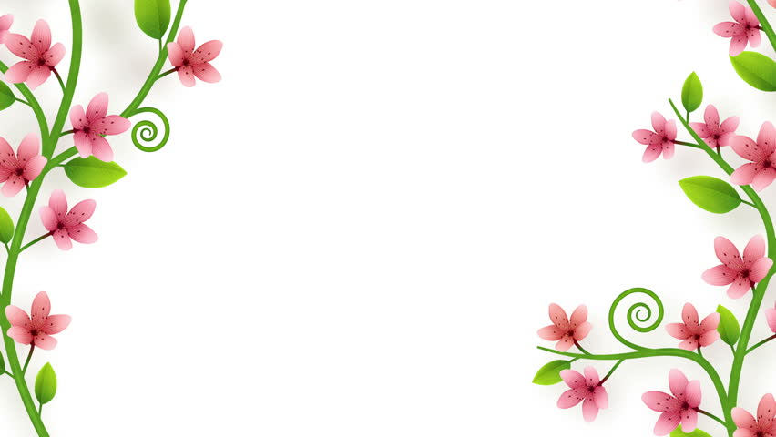 Growing flower ornament on white background with alpha   Shutterstock HD Video #1008287350