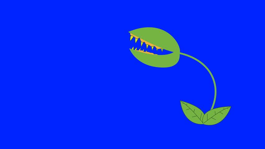Cartoon Venus Fly Trap Biting on a Blue Screen Background