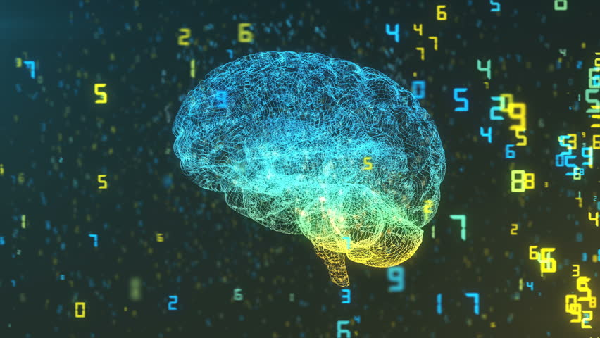 3D Render of brain in wireframe in cloud of digital information illustrating computer and AI concepts