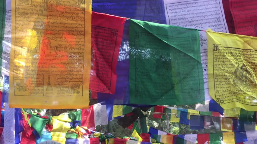 Gaya, India - January 25, 2017: Tibetan prayer flags hang across trees. They are used to promote peace, compassion, strength, and wisdom. | Shutterstock HD Video #1008465280
