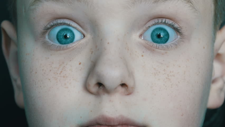Funny cheerful blue-eyed boy with freckles boy who is surprised at the camera | Shutterstock HD Video #1008538135