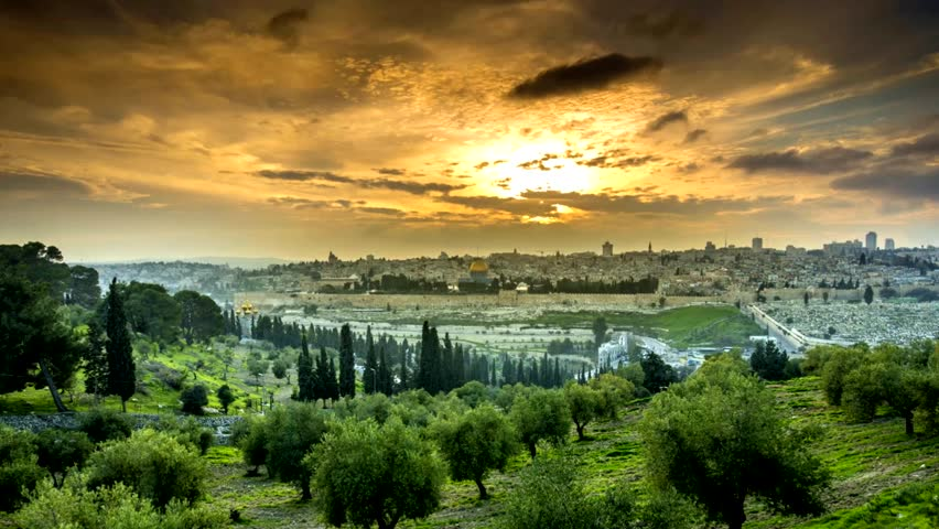 Dramatic sunset time lapse of Jerusalem's Old City, view from the Mount of Olives, with an olive grove in the foreground