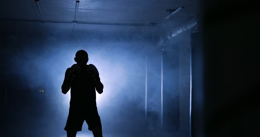 Boxer workout in a boxing club. Silhouette | Shutterstock HD Video #1008842066