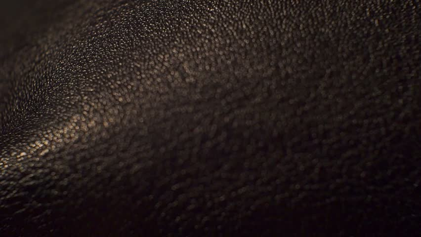 Surface smooth polished textured shiny dark leather.closeup. | Shutterstock HD Video #1008880406