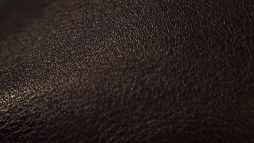 Surface smooth polished textured shiny dark leather.close up. | Shutterstock HD Video #1008881171