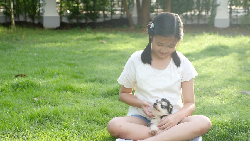 Happy Asian girl playing with siberian husky dog in the garden | Shutterstock HD Video #1008951035