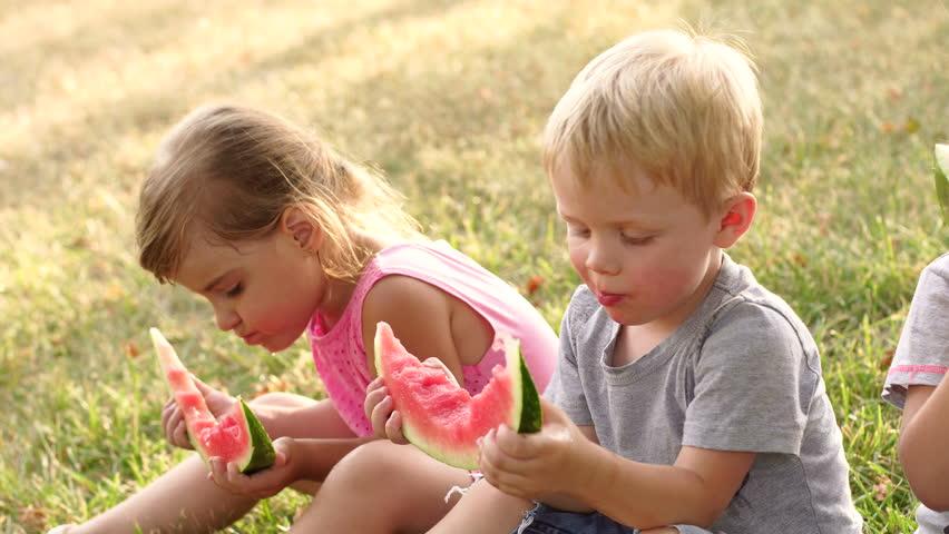 Group of children eating watermelon outdoors. Children eating watermelon sitting on the grass in park. Close-up. High resolution. 4K. | Shutterstock HD Video #1009012391