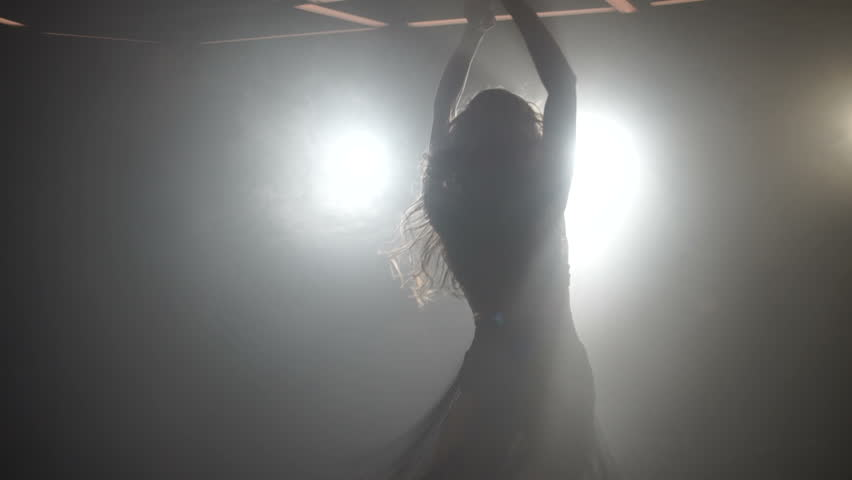 Silhouettes of a professional dancer #1009116101
