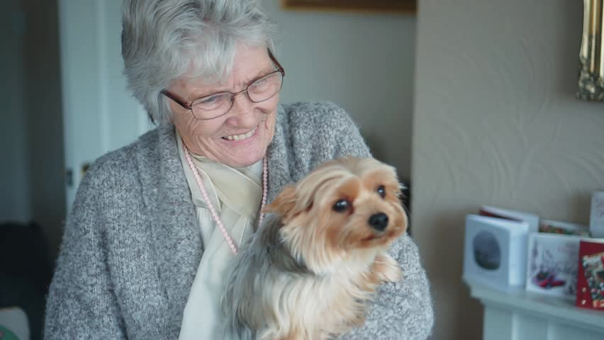 Happy Elderly Lady 80+ Indoors, Smiling With Dog, Pet Owner In Slow Motion Royalty-Free Stock Footage #1009334084